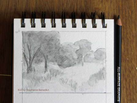 Vernal Pool sketch by Stephanie Benedict