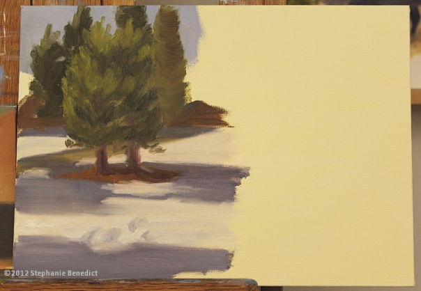 Pine Tree Study by Stephanie Benedict