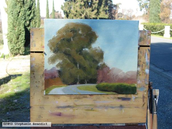 Delta Eucalyptus by Stephanie Benedict
