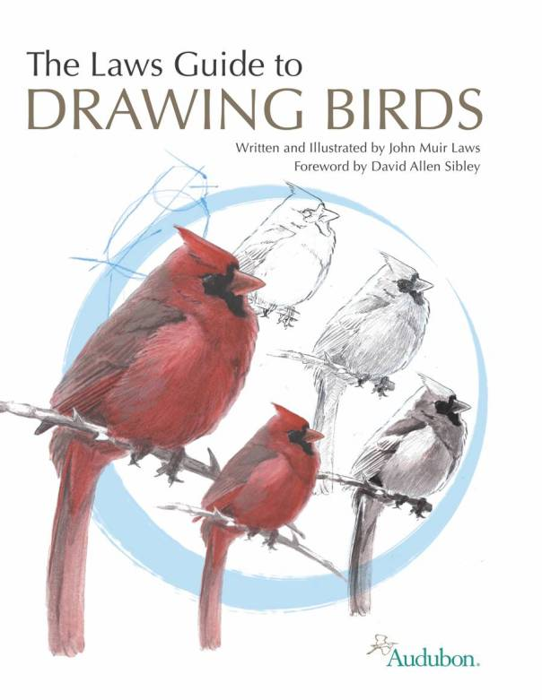 The Laws Guide to Drawing Birds, cover illustration