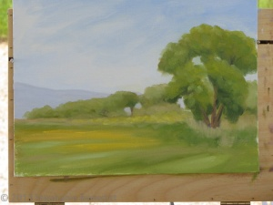 Stephanie Benedict mustard and goldfields en plein air
