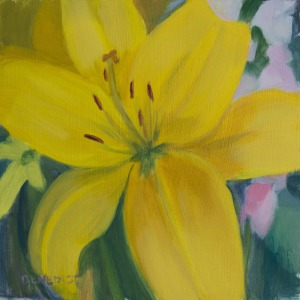 Yellow Lily, ©2013 Stephanie Benedict.