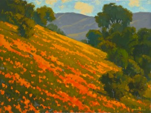 Point Reyes Poppies by Tim Soltesz.